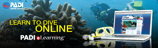 Padi Elearning website